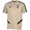 adidas-Real Madrid Trænings T-shirt 2019/20-Rawgol/Black-2110643