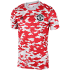 adidas-Manchester United Pre-Match T-Shirt-Powred/Reared/Stone-2227138