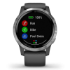 Garmin-Vivoactive 4-Dark Grey-2161313