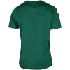 Hummel-AB Core Poly Spilletrøje-Green-2168184