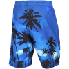 M79-Graphic Surf Badeshorts-Bright Blue-2144194