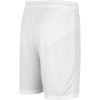 Nike-Park II Knit Shorts-White/Black-1429776