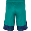 Nike-Strike GPX Printed Woven Shorts-Rio Teal/Deep Royal -1442384