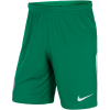 Nike-Manchester City Målmandsshorts 2017/18-Pine Green/White-1553348