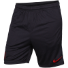 Nike-Paris SG Dry Strike Shorts 2019/20-Oil Grey/Obsidian/Un-2093227