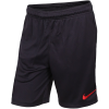 Nike-Paris SG Dri-FIT Strike Shorts 2019/20-Oil Grey/Obsidian/Un-2093373