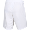 Nike-Dri-FIT Park III Shorts-White/Black-2156513