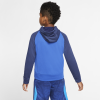 Nike-Dri-FIT Graphic Hoodie-Game Royal/Midnight -2158715