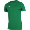 Nike-Dri-FIT Park VII Spilletrøje-Pine Green/White-2160171