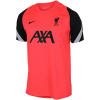 Nike-Liverpool Strike T-shirt 2020/21-Laser Crimson/Black/-2181701