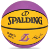 Spalding-NBA L.A. Lakers Basketball - Size 5-Multicolor-1543041